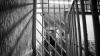 Оправдан и вновь осужден: уголовное дело сутенера «ходило» по судам четыре года