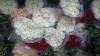 Таможенники пресекли незаконную перевозку более двух тысяч роз (ВИДЕО)