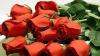 """Розы в """"Мерседесе"""": перевозил цветы из Приднестровья, но был пойман (ВИДЕО)"""