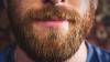 Студенты Юты начали протест против запрета на бороды