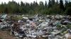 Проблема мусора вызывает серьезные опасения жителей Бельц