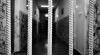 Трое полицейских из Бессарабки осуждены за пытки двух братьев