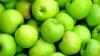 Россия не впустила молдавские яблоки из Белоруссии