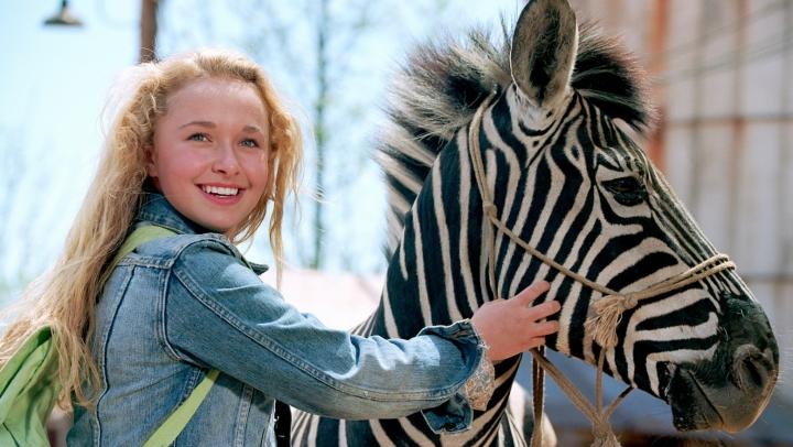 В штате Невада состоялись гонки верблюдов, страусов и зебр