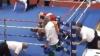 Хорватский боксер избил судью прямо на ринге