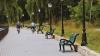 Очередной акт вандализма в парке Валя Морилор (ФОТО)