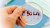 В Финляндии госпитализирован больной с подозрениями на Эболу