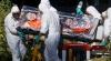 В Мадриде идет расследование первого случая заражения Эболой в Европе