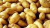Девушка пыталась избежать беременности с помощью картофеля