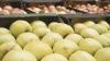 Лишь в десяти районах страны нашлись поставщики яблок для всех учебных заведений