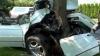 ДТП в Чадыр-Лунге: четыре человека погибли, двое попали в больницу