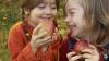 Две тонны яблок получили в подарок дети, которые лечатся в Центре матери и ребёнка
