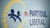 ЛП настаивает на создании совместных таможенных пунктов на границе с Румынией