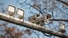 Киртоакэ обеспокоен бликами от камер наружного наблюдения, установленных на перекрестках