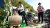 Национальный праздник вина принёс местным производителям больший доход
