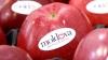 Молдавские яблоки попали на прилавки крупной сети супермаркетов в Румынии