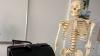 Скелет бывшего директора румынской школы пригодился на уроках биологии