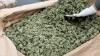 В Парагвае мужчина на тракторе вез тонну марихуаны