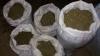 Рекордную партию наркотиков обнаружила кишиневская полиция (ВИДЕО)