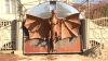 Житель села Гура Галбенэ повесил на ворота дракона