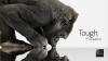 Компания Corning представила новое поколение защитного стекла Gorilla Glass (ВИДЕО)