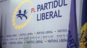 Либеральная партия считает, что молдавская диаспора в России контролируется ФСБ