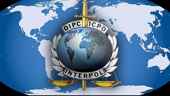 Россельхознадзор обратился в Интерпол в связи с поставками продовольствия в РФ