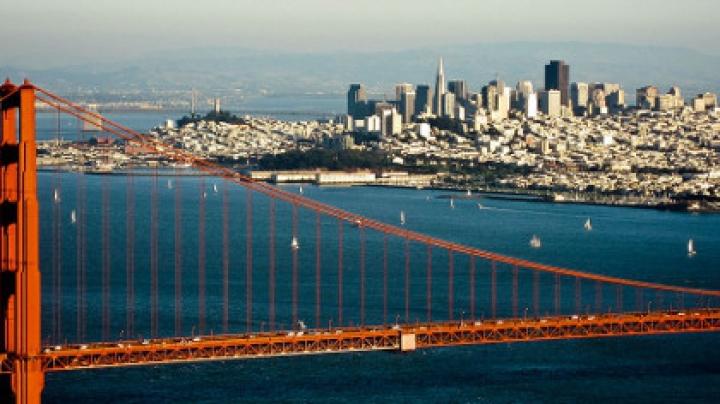 Мэром Сан-Франциско на один день стала собака