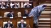 Коза-проказница забодала парламентариев (ВИДЕО)