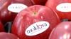 Россия обсудила возможность возобновления поставок молдавских яблок