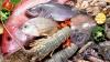 Эксперимент Publika TV: за что мы платим, покупая замороженные рыбу и морепродукты