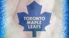 """НХЛ: """"Бостон Брюинз"""" уступил в драматичном поединке """"Торонто Мейпл Лифс"""""""