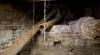 Ремонт линии водопровода по улице Вадул-луй-Водэ будет стоить бюджету Кишинева не менее 10 млн леев