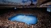 На Открытом чемпионате Австралии по теннису определились первые полуфиналисты