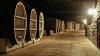Необычное спортивное соревнование: забег в винном подвале (ВИДЕО)