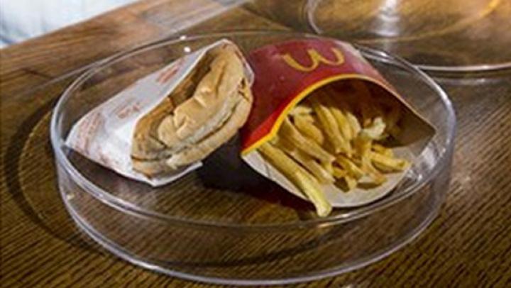 Исландец показал шестилетний бургер из McDonald's
