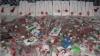 Рукодельница из Калараша связала более 2000 мэрцишоров для праздника весны