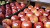 Российский эксперт: Россия должна снять эмбарго с молдавской продукции