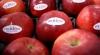 Более 40 тонн молдавских яблок доставлены на рынки Бангладеша