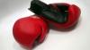 Яркие бои на восьмом международном чемпионате Кагульского района по боксу