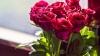 У цветочных ларьков многолюдно: мужчины покупают букеты для коллег