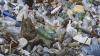 Жители пригорода Кодру страдают из-за невыносимого запаха стихийной свалки (ВИДЕО)