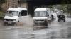 В Молдове предотвращена попытка нелегальной продажи куриного мяса (ФОТО)