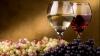 На выставке вин в Дюссельдорфе продукцию представят 24 молдавских производителя