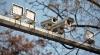Аннулировано решение о незаконности установки камер наружного наблюдения