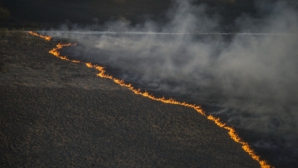 Борьба с пожарами в канадской Альберте может затянуться на месяцы