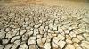 Засуха угрожает яровым культурам
