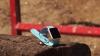 Apple Watch проверили на прочность выстрелом из винтовки (ВИДЕО)