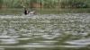 В Окницком районе утонул человек (ВИДЕО)