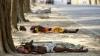 Более 1700 человек погибли от жары на юге Индии